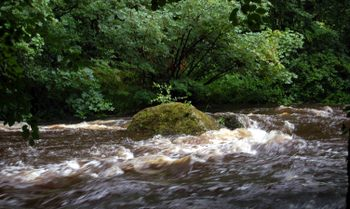 Dartmoor_river