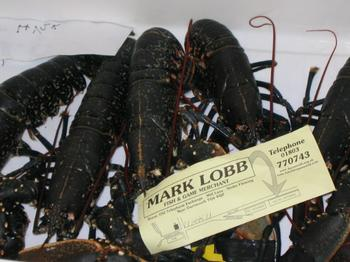 Mark_buys_the_lobsters