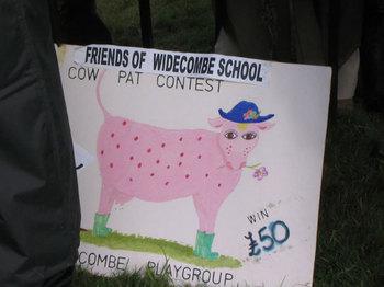 Cowpatcontest